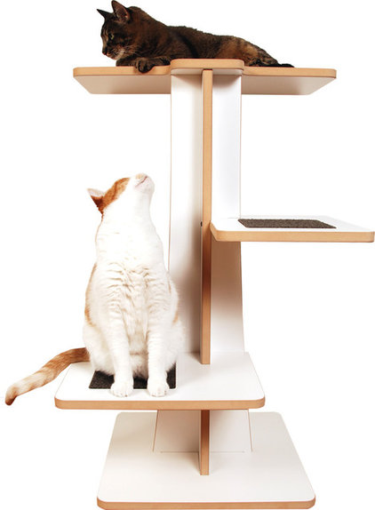 Modern Pet Care by Square Cat Habitat