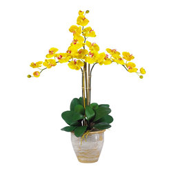 """Nearly Natural - Nearly Natural Triple Stem Phalaenopsis Silk Orchid Arrangement in Yellow - Looking for the perfect Orchid with absolutely no maintenance? The 27"""" triple stem phalaenopsis is a classic Orchid to be enjoyed by all, even the most discriminating customer. Each Silk plant comes with three beautiful phalaenopsis stems each with 6 flowers and 2 buds. finished with a gorgeous glazed ceramic vase designed to coordinate with any decor, this beauty will bring color and life into any space. Color: Gold, Height: 27"""""""", vase: H 7"""""""" W 8-1/2"""""""