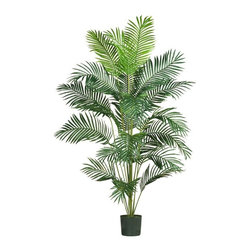 7' Paradise Palm - Want to add a creative touch to your home or office without spending a fortune? This grand style Paradise palm is sure to do the trick. Standing 7 feet tall, this stately beauty adds life to any decor. Twenty-one natural looking fronds embellish this gorgeous tree from head to toe. Each individual frond is carefully crafted with a lush mix of wispy feathery shaped leaves. Guaranteed to provide years of hassle free beauty. Height= 7 ft x Width= 59 in x Depth= 54 in