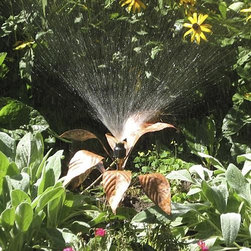 "Frontgate - Artisan Handmade Copper Hosta Sprinkler - Handmade from copper. Adjustable brass nozzle directs the water flow within a radius of 4 to 15 ft.. Features dual hose connections. Powdercoated steel 6"" step stake plants firmly in the ground. Hosta sprinkler has a slight patina finish; Iris has a shining copper finish. Nestled in the garden, our Handmade Copper Flower Sprinklers create a beautiful watering display. Keep your plants properly watered while enriching your landscape with these elegant, artisan-crafted lawn and garden enhancements.  .  .  .  .  . Both will age naturally over time Connect multiple sprinklers together using our 10' leader hose (sold seperately). . Control the water area with a regular screwdriver; simply adjust the screw in the spray nozzle. Handmade in the USA."