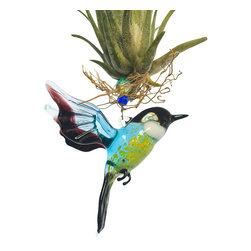 Spirit Pieces - Flying Flycatcher Glass Bird Figurine and Tillandsia Air Plant Living Ornament - This wonderfully alive home decor accent item is great for windows, mantles or door thresholds.  A perfect gift for anyone who lives birds or plants, it only requires a weekly watering and, if placed in a bathroom or above a kitchen sink, will never need watering.  Indirect light