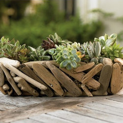 Driftwood Succulent Garden Basket - Like flowers, plants and succulents are affordable accents for any space. When not in use for your plants, make this sweet driftwood planter a bread basket or a place to store your jewelry. Why not?!