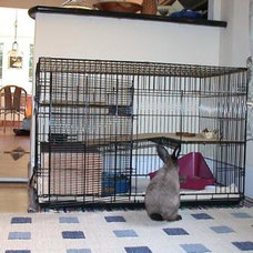BunSpace.com Forum: Rabbits in dog crate cages? I want to see your pictures!