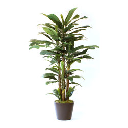 Dalmarko Designs - Lush Banana Tree - This tree will accent any space very nicely.