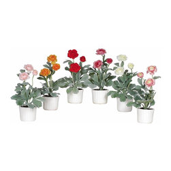 Nearly Natural - Ranunculus with White Vase (Set of 6) - Not for outdoor use. Great assortment of stunning hues. Each plant contains three bursting stems. The perfect accent for your work space. . Included container size: 4 in. W X 3.25 in. H. Made of: Polyester material, Ceramic vase6 in. W X 6 in. D X 12 in. H (5.5lbs)While their name might not seem very eye-catching, these beautiful Ranunculi are sure to please even the most discerning critics. Bold bursting blooms perched on a trio of long slender stems make these flowers the focal point of any room they grace. A cluster of elongated green foliage surrounds three multi-colored petals. A sleek yet simple white ceramic vase adds a nice finishing touch.