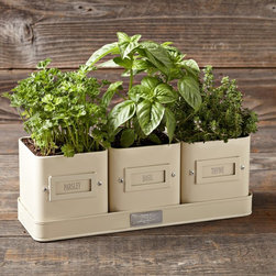 Herb Pot with Tray - Start a little herb garden on your front stoop or balcony. These pots are perfectly sized for a small taste of the garden.