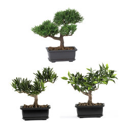 "Nearly Natural - 8.5"" Bonsai Silk Plant Collection (Set of 3) - Some people prefer the tiniest Bonsai plant available, and for these people, our 8.5"" Bonsai set fits the bill perfectly. Lovingly crafted from the finest materials, these miniature trees look so lush, and so real, that you'll be tempted to water them! Standing 8.5"" tall, and rising from a decorative pot, this three-plant grouping will add charm to any home or office setting."