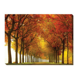 Grandin Road - So Full Outdoor Art - Gallery-wrapped outdoor wall art featuring a road lined by trees full of autumn leaves. Waterproof polyester canvas stretched over an all-weather vinyl frame. UV-resistant inks won't fade in direct sunlight. Easy to clean with a damp cloth. Suitable for indoor or outdoor display. Go for a drive beneath the boughs of trees full of autumn leaves without ever getting in your car; So Full outdoor art adds a window into a dream world right on the wall of your porch, patio or sun room. The mix of warm hues come to life through all-weather inks on waterproof canvas, employing the giclee printing method for a look that closely resembles the artist's original.. . . . . Arrives ready to hang.