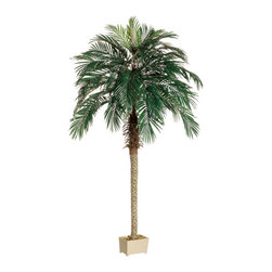 Silk Plants Direct - Silk Plants Direct Phoenix Palm Tree (Pack of 1) - Pack of 1. Silk Plants Direct specializes in manufacturing, design and supply of the most life-like, premium quality artificial plants, trees, flowers, arrangements, topiaries and containers for home, office and commercial use. Our Phoenix Palm Tree includes the following: