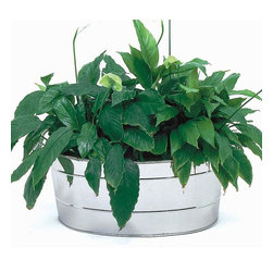 "Achla - Oval Stainless Steel Tub Planter - Give a lawn a rustic look with this galvanized steel planter: a tub with plenty of planting room for one large plant or a collection of plants.  Fantastic as an entryway adornment, even more beautiful when used to accent existing flowerbeds.  Strong, reusable, and lovely, this tub planter is an eye-pleaser as well as practical.  Measuring 20.5"" by 15"" and 9.5"" deep, this lovely handled Oval Stainless Steel Tub Planter adds a touch of country to your garden.  Durable and water resistant Stainless Steel construction makes this Oval Tub perfect for your favorite potted plants. * Stainless Steel. 20.5 L x 15 W x 9.5 D in."