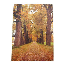 Zeckos - Scenic Autumn Trees Printed Canvas Wall Art - Add a splash of color to your home decor with this beautiful scenic printed canvas. It features a tree lined lane in Autumn, lightly dusted with fallen leaves. The print measures 28 inches tall, 20 inches wide, 1 1/4 inches deep and mounts to the wall with a single nail or screw. It makes a lovely addition to any home, in any season.