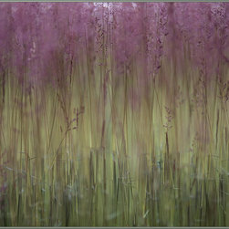 "Concord Global - National Geographic Photographic 6'7"" x 9'3"" Rugs Field Of Grass Purple Floral ( - A field of Festuca grass paints a beautiful, abstract landscape in Hajd�n�n�s, Hungary."