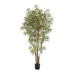 Nearly Natural - Japanese Artificial Bamboo Tree - Includes planter. Several natural trunks. Nearly two thousand leaves. Elegant look and feel. Perfect for home or office. Made from silk. Green color. Planter: 6.5 in. Dia. x 5.75 in. H. 30 in. L x 30 in. W x 72 in. HThe Japanese bamboo is one of nature's prettiest bamboo trees. Like all bamboo trees, it has sturdy trunk-like stalks, but the leaves are what really makes it distinct - the Japanese bamboo leaves are elegant, and explode into a fluff of green, giving it a definitive whimsical look. Ideal for almost any location, this beautiful oriental favorite also makes a perfect gift.