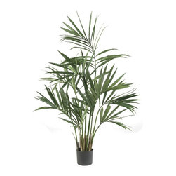 5' Kentia Palm Silk Tree - We know the year is heating up when we see plants like the Kenita Palm. And now you can experience that 'summery' feeling all year with this beautiful 5' recreation of a lush, wispy Kenita Palm. With 9 stems and 156 leaves, it's perfect for dancing in the summer breezes (even if those breezes are made by your indoor fan!) Makes an ideal gift, too. Height= 5 ft x Width= 36 in x Depth= 36 in