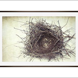 "Lupen Grainne Framed Print, Nest, Mat, 28 x 42"", Espresso - This is an image of an abandoned nest the photographer found in an enormous passionflower vine. The photo is at once charming and haunting, conjuring up thoughts of flight and home. 13"" wide x 11"" high 20"" wide x 16"" high 42"" wide x 28"" high Alder wood frame. Black or white painted finish; or espresso stained finish. Beveled white mat is archival quality and acid-free. Available with or without a mat. {{link path='/shop/accessories-decor/pb-artist-gallery/artist-gallery-lupen-grainne/'}}Get to know Lupen Grainne.{{/link}}"