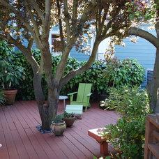 023.Bernal Heights Greenhouse