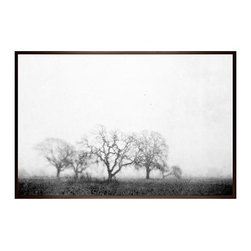 """Lupen Grainne Framed Print, Black & White Fog and Trees, No Mat, 28 x 42"""", Espre - The unity and diversity of an oak tree's bare winter branches stand in stark relief against a wide foggy sky. A study in natural patterns, the distant trees take on the look of coral, as multifaceted as snowflakes. 13"""" wide x 11"""" high 20"""" wide x 16"""" high 42"""" wide x 28"""" high Alder wood frame. Black or white painted finish; or espresso stained finish. Beveled white mat is archival quality and acid-free. Available with or without a mat.{{link path='shop/accessories-decor/pb-artist-gallery/artist-gallery-lupen-grainne/'}}Get to know Lupen Grainne.{{/link}}"""