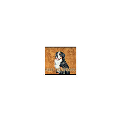 Caroline's Treasures - Bernese Mountain Dog Wipe Your Paws Indoor or Outdoor Mat 18 x 27 Lh9452Mat - Bernese Mountain Dog Wipe your Paws Indoor or Outdoor Mat 18x27 LH9452MAT Indoor/ Outdoor Floor Mat 18 inch by 27 inch Action Back Felt Floor Mat / Carpet / Rug that is Made and Printed in the USA. A Black binding tape is sewn around the mat for durability and to nicely frame the artwork. The mat has been permanently dyed for moderate traffic and can be placed inside or out (only under a covered space). Durable and fade resistant. The back of the mat is rubber backed to keep the mat from slipping on a smooth floor. Wash with soap and water.