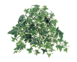 Silk Plants Direct - Silk Plants Direct Sage Ivy Hanging Plant Bush (Pack of 24) - Green - Pack of 24. Silk Plants Direct specializes in manufacturing, design and supply of the most life-like, premium quality artificial plants, trees, flowers, arrangements, topiaries and containers for home, office and commercial use. Our Sage Ivy Hanging Plant Bush includes the following: