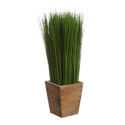 Silk Plants Direct - Silk Plants Direct Grass (Pack of 2) - Pack of 2. Silk Plants Direct specializes in manufacturing, design and supply of the most life-like, premium quality artificial plants, trees, flowers, arrangements, topiaries and containers for home, office and commercial use. Our Grass includes the following: