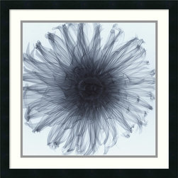 Amanti Art - Dahlia Framed Print by Steven N. Meyers - This exposé of a dahlia reveals a fascinating and sensuous nature. You'll find that after your original infatuation with this amazing photographic print, your love will continue to grow for years to come.