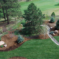 Traditional Landscape by Blue Spruce Landscaping Inc