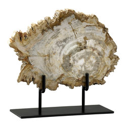 """Kathy Kuo Home - Roswell Medium Petrified Wood Fragment Sculpture - There's nothing """"petrifying"""" about the age of this beautiful specimen - its age is simply beyond comprehension.  Organic, earthy and timeless, this beautifully mounted piece of petrified wood will look great in any contemporary space."""