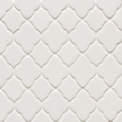 Vibe Moroccan Mosiac Field in White Gloss - Ceramic and Terracotta