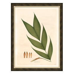 Soicher-Marin - Palm Fronds H - Giclee Print with a brown distressed wood frame with an off-white linen liner. Includes glass, eyes and wire. Made in the USA. Wipe down with damp cloth