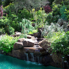 Pool by Richard Lusk Landscape and Design