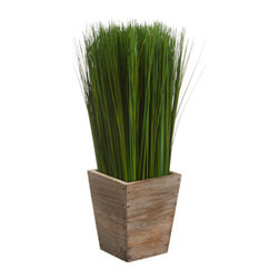 Silk Plants Direct - Silk Plants Direct Grass (Pack of 2) - Silk Plants Direct specializes in manufacturing, design and supply of the most life-like, premium quality artificial plants, trees, flowers, arrangements, topiaries and containers for home, office and commercial use. Our Grass includes the following: