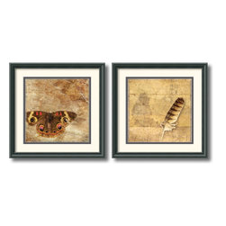 Amanti Art - Moth and Owl Feather - Set by Susan Friedman - Susan Friedman's beautifully enhanced photographic prints have a nostalgic, magical feel to them. Contrasting delicate forms, Friedman invites viewers to explore the world of as never before.