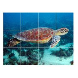 Picture-Tiles, LLC - Turtle Picture Wall Back Splash Tile Mural  18 x 24 - * Turtle Picture Wall Back Splash Tile Mural 2001