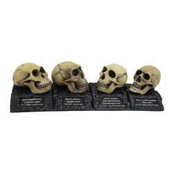 Zeckos - Evolution of the Human Skull Plaque - If you subscribe to the theory of evolution, this plaque is a wonderful addition to your home or office. Made of cold cast resin, it measures 3 inches tall, 10 1/2 inches long, and 2 1/2 inches wide. The plaque features the names and time periods for Australopithecus, Homo erectus, Homo sapiens meander thalassic, and Homo sapiens . This piece is wonderfully detailed, and is sure to be admired.