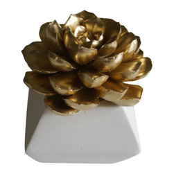 Waterstone Succulents - Metallic Succulent Sculpture, Gold, Square Geometric Container - A handmade succulent sculpture with interchangeable container. The perfect accessory for the modern home or office, and a great gift for any occasion. Creates the feel of a live plant minus any of the maintenance. Beautiful as an individual decorative accessory or grouped into sets of 3 or more.