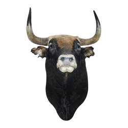 Walls Need Love - Spanish Fighting Bull, Adhesive Wall Decal - Grab this decal by the horns and adhere it to your wall. There you can admire this Spanish bull, even stare back at the dark eyes and get up close to the horns — without needing to run.
