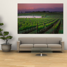 Sunrise in Distant Fog, Carnaros, Napa Valley, California, USA Wall Mural by Jan