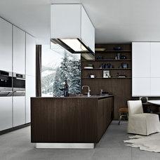 Modern Kitchen Cabinets by Switch Modern