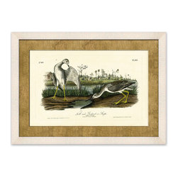 Frontgate - Tell-tale Godwit - This delightful pair of Tell-tale Godwit bring a sense of seaside serenity to your home. This framed giclee print is a reproduction of an 1888 chromolithograph originally published in Audubon's Birds of America. Giclee printing ensures the highest resolution quality and spectacular color fidelity. Hand-wrapped burlap mat. Framed in off-white wood molding . Made in USA.