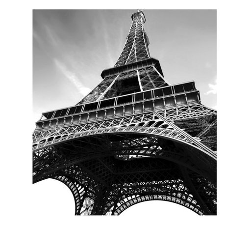 WallPops - Paris Photographic Panels Wall Art Kit Multicolor - WPDP0245 - Shop for Stickers from Hayneedle.com! Bring the City of Lights home with the Paris Photographic Panels Wall Art Kit. This oversized wall decal is a unique view of the iconic Eiffel Tower in black and white. Get the look wherever you choose as this peel-and-stick wall decal may be removed or reused at will.