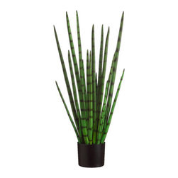 Silk Plants Direct - Silk Plants Direct Snake Grass (Pack of 2) - Silk Plants Direct specializes in manufacturing, design and supply of the most life-like, premium quality artificial plants, trees, flowers, arrangements, topiaries and containers for home, office and commercial use. Our Snake Grass includes the following: