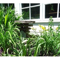 Montgomery County Landscaping - Montgomery County Landscaping