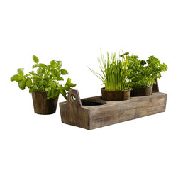Pier Surplus - Wooden Garden Plant Tray - Three-sectioned Tray for Herbs And Flowers #PL221917 - This wooden tray serves as a visual treat to display new starts or established plants. Keep fresh kitchen herbs like chives, parsley, and oregano close at hand while enjoying the way they are displayed on your kitchen window sill. Its functional use and attractive display make it an invaluable present for any friend who enjoys cooking or gardeners who enjoy watching a plant take root. Pots are removable and lined with foil.