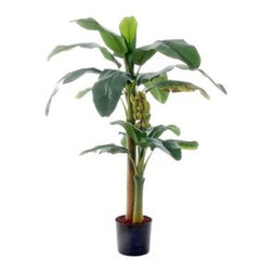 Banana Plant - This meticulously handcrafted Banana Plant will bring the exotic appeal of the tropics to your home or office decor, without the hassle of seasonal upkeep. Constructed of fine-quality, soft silk plastic, this faux tree features leafy greens of varied shades with small details that ensure a lifelike look. Suitable for indoor or outdoor use, this artificial plant includes a durable, plastic container. About FloraNovaraBased in Virginia Beach, Virginia, FloraNovara is a leading creator and distributor of premium-quality faux flora. Designed to last a lifetime, FloraNovara's range of flowers, trees, shrubs and stems brightens patios, living rooms, and offices around the world with touches of lush greenery. Curated from an assortment of colorful, exotic flora, FloraNovara's lifelike silk plants are handcrafted in Asia and inspected meticulously in the United States before shipping worldwide.