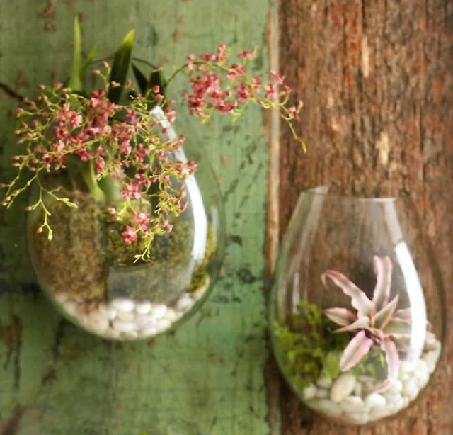 Recycled Glass Wall Terrarium  indoor pots and planters