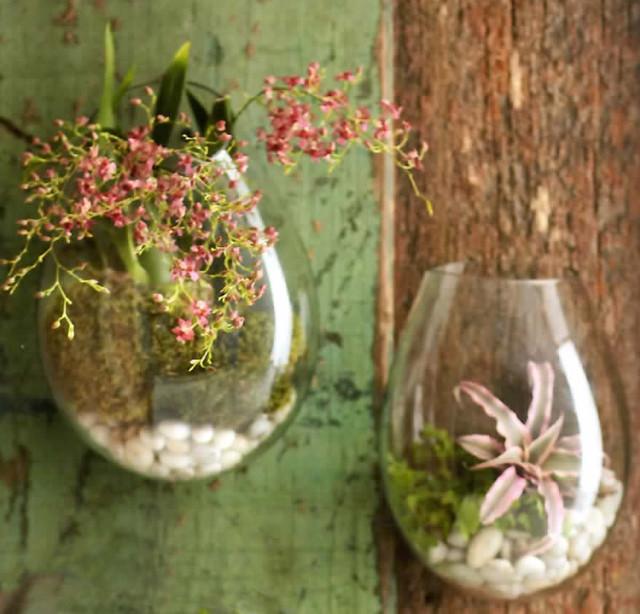 Recycled Glass Wall Terrarium terrariums
