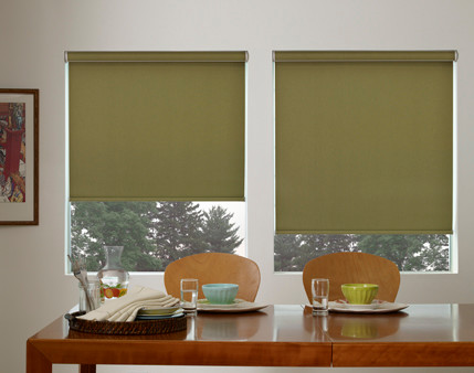 Roller Shades traditional-roller-shades