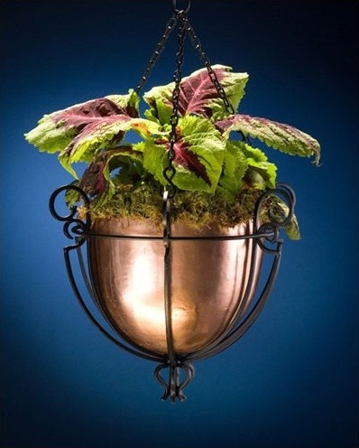 Hanging Basket Modern Indoor Pots And Planters By