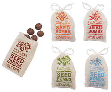 Wildflower Seed Bombs eclectic plants