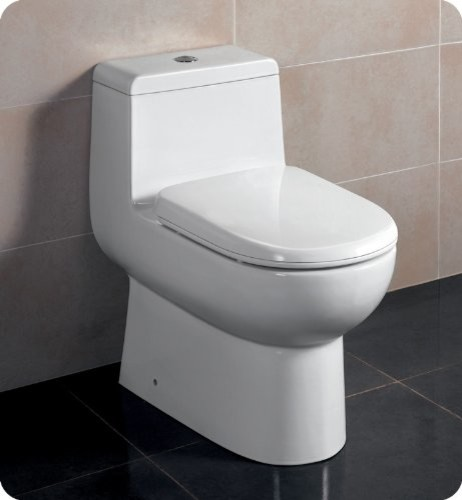 Antila 1 Piece Dual Flush Toilet With Soft Close Seat Modern Toilets By Amazon